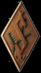 Šalkone logo